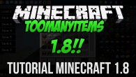 Salut. In acest tutorial video te voi invata cum sa instalezi modul TooManyItems pentru orice versiune de Minecraft 1.8. Downloadeaza TooManyItems: http://goo.gl/sgi2BV
